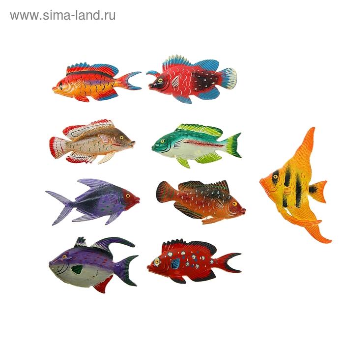 """Магнит """"Рыбка-карп"""", МИКС"""