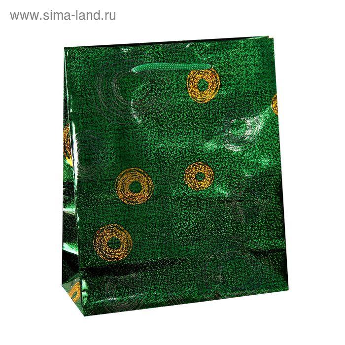 """Пакет голографический """"Круги"""", цвет зелёный"""