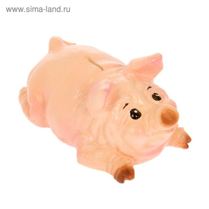 """Копилка """"Свин: лежит"""""""