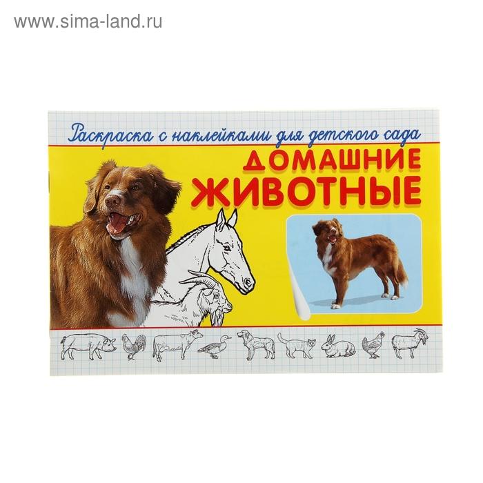 """Раскраска с наклейками для детского сада """"Домашние животные"""""""
