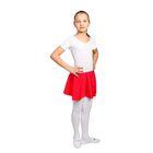 Юбка-солнце гимнастическая, размер 30, цвет красный