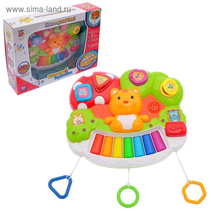 """Пианино детское """"Забавный котёнок"""", со световыми эффектами, БОНУС - книжка """"Игры и занятия на пианино"""""""