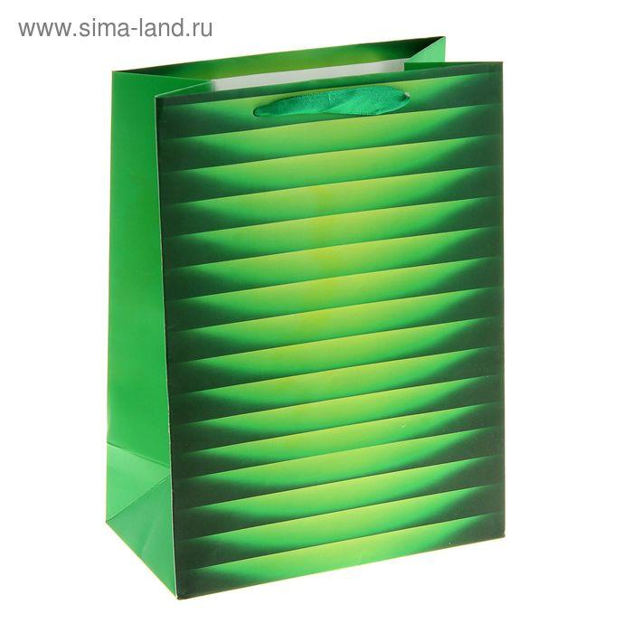 Пакет ламинированный, цвет зеленый