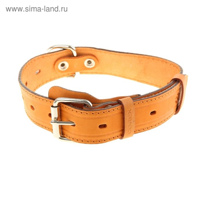 Ошейник кожаный, однослойный, 3,5 см х 65 см, с выносным кольцом, безразмерный, микс