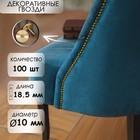 Гвозди декоративные, 18.5 х 10 мм, цвет золото, в упаковке 100 шт.