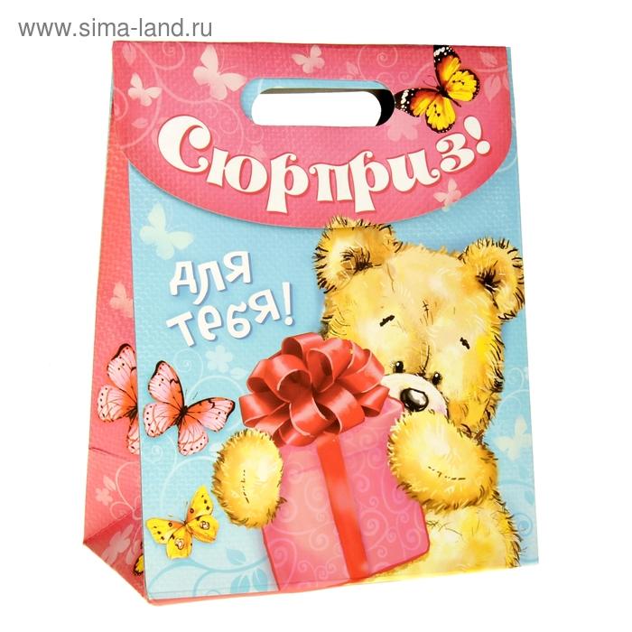 Пакет с клапаном «Мишка с подарком»,18 х23 см