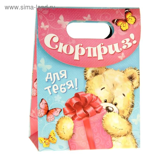 Пакет с клапаном «Мишка с подарком», S 11 х 14 х 5,5 см