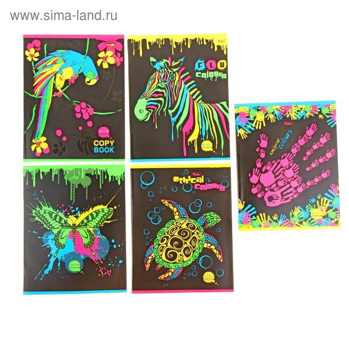 Тетрадь 48 листов клетка Neon Colour НЕОН картонная обложка, выборочный лак, 5 видов МИКС