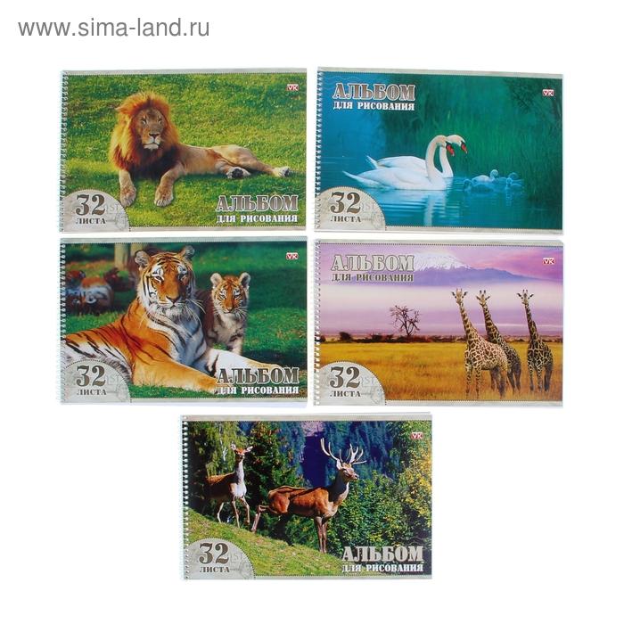 """Альбом для рисования А4, 32 листа на гребне """"Животный мир"""", обложка картон 230г/м2, выборочный лак, блок офсет 100 г/м2, 5 видов МИКС"""