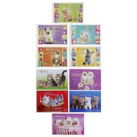 Альбом для рисования А4, 24 листа на гребне 'Милые Котята' обложка картон 185г/м2, блок офсет 100 г/м2, с перфорацией на отрыв, 5 видов МИКС Ош