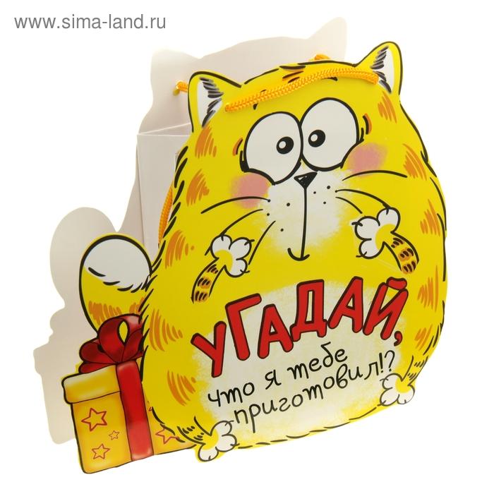 """Пакет-открытка """"Котэ с сюрпризом"""",12 х 15 см"""