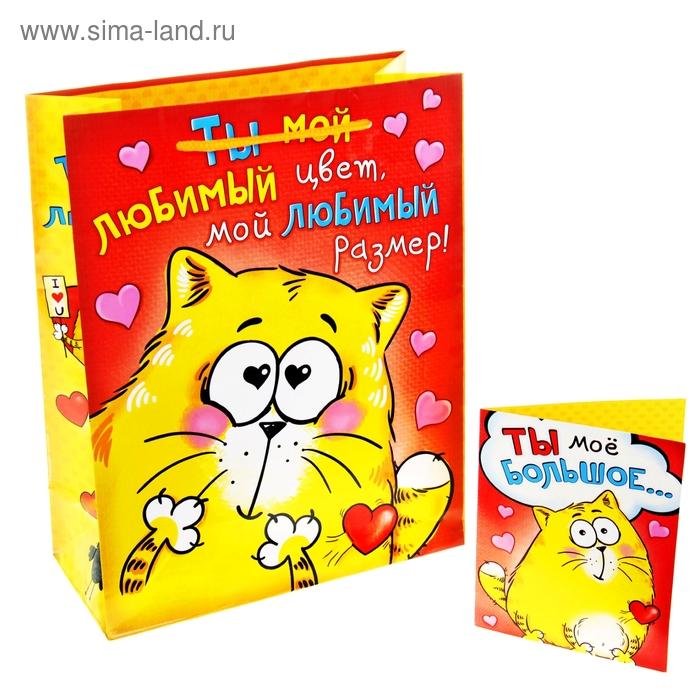 """Пакет подарочный с открыткой """"Ты мой любимый цвет, любимый размер"""""""