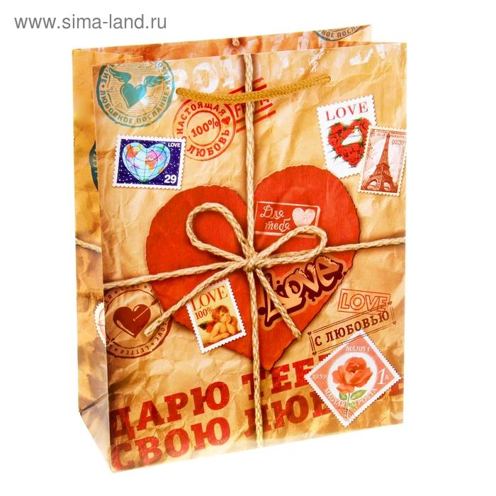 """Пакет подарочный """"Посылка. Дарю тебе свою любовь"""""""