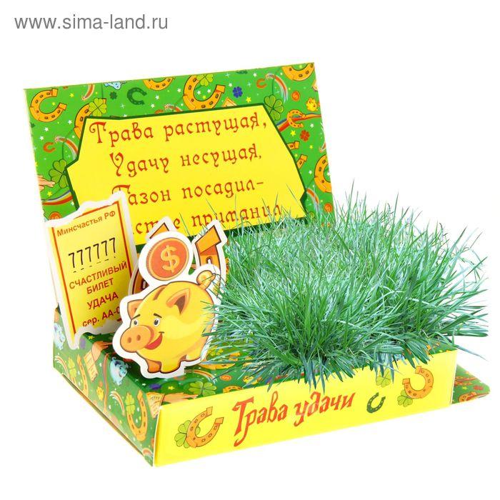 """Открытка-растущая трава """"Трава удачи"""""""