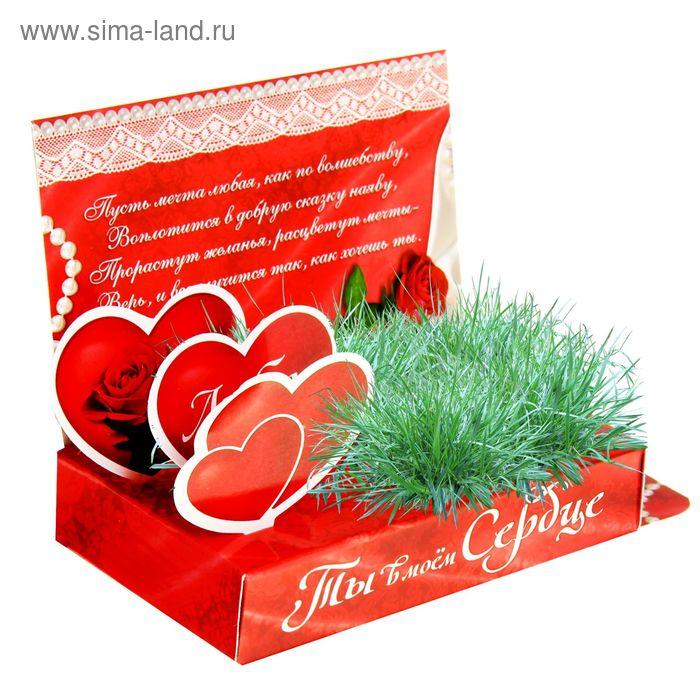 """Открытка-растущая трава """"Ты в моем сердце"""""""