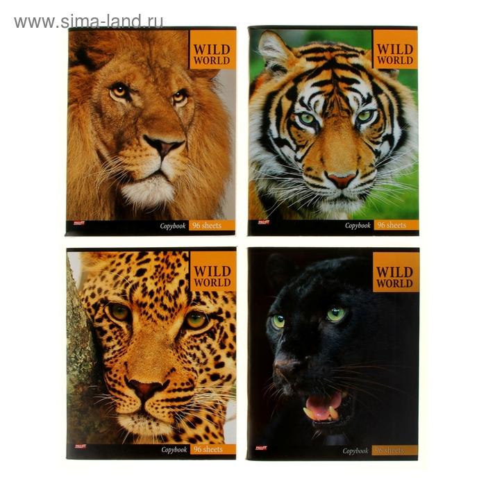 """Тетрадь 96 листов клетка """"Большие кошки"""", обложка картон хромэрзац, 4 вида МИКС"""