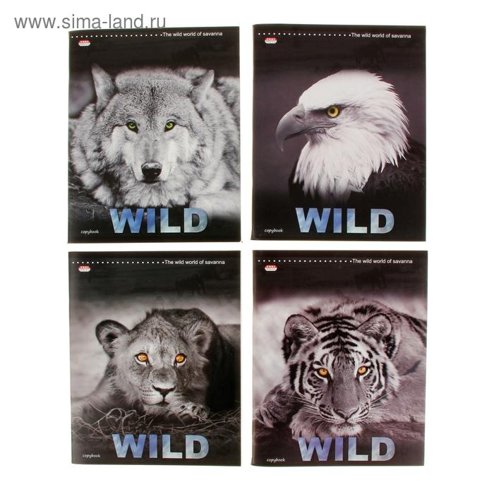 """Тетрадь 96 листов клетка """"Таинственные животные"""", картонная обложка, выборочный лак, 4 вида МИКС"""
