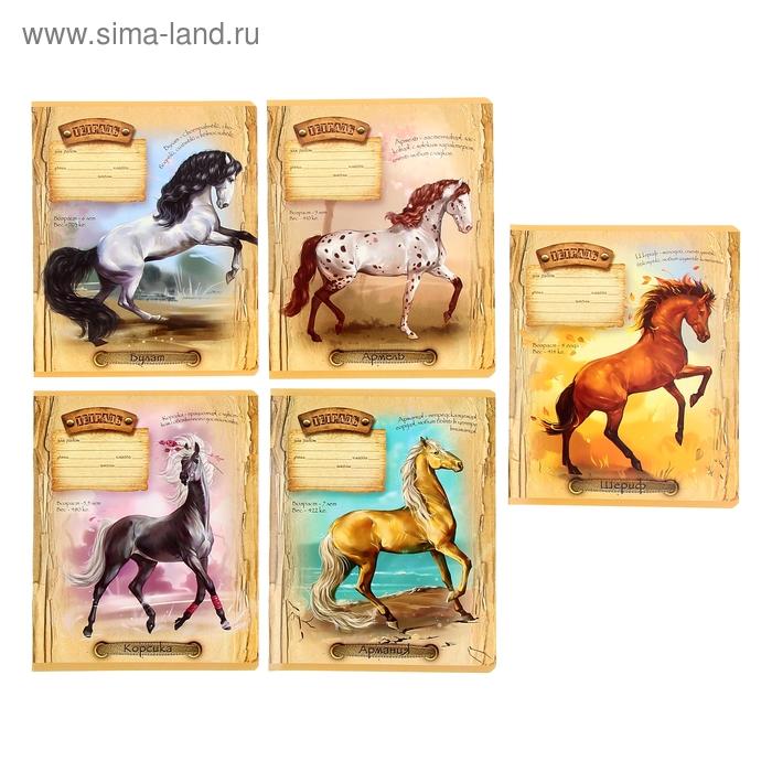 """Тетрадь 12 листов линейка """"Ах вы кони мои кони"""", картонная обложка, водный лак, 5 видов МИКС"""