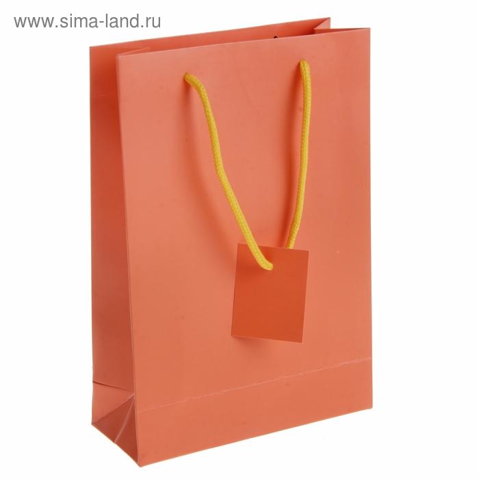 Пакет ламинированный, цвет оранжевый