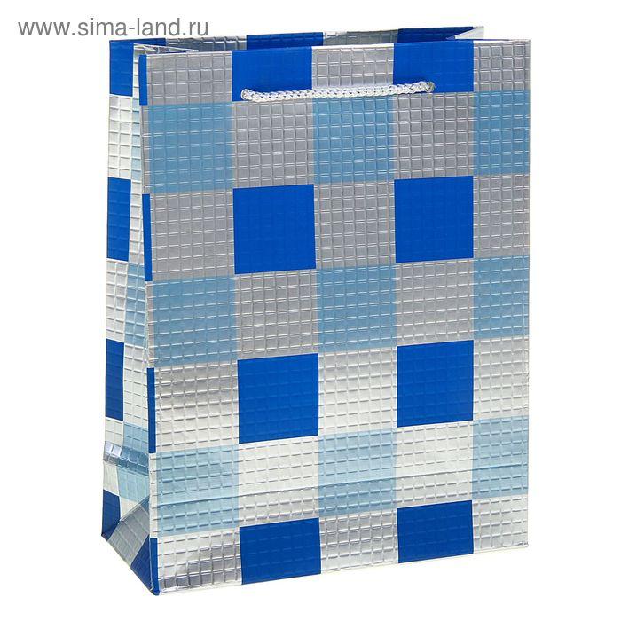 """Пакет ламинированный """"Клетка. Фактура"""", цвет голубой"""