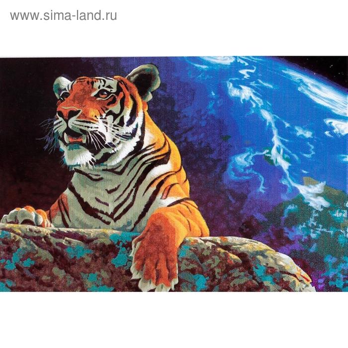 "Роспись по холсту ""Тигр на камне"" по номерам с красками по 3 мл + кисти + инструкция + крепеж"