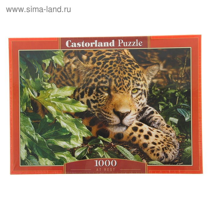 "Пазлы ""Леопард"" 1000 элементов C-102051"