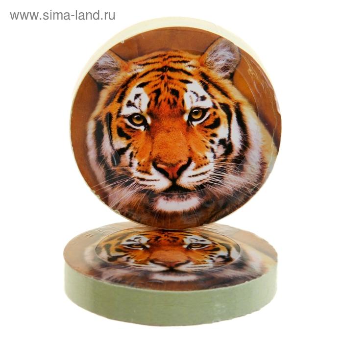 "Полотенце прессованное Collorista ""Тигр"", размер 28х28 см, цвет микс"