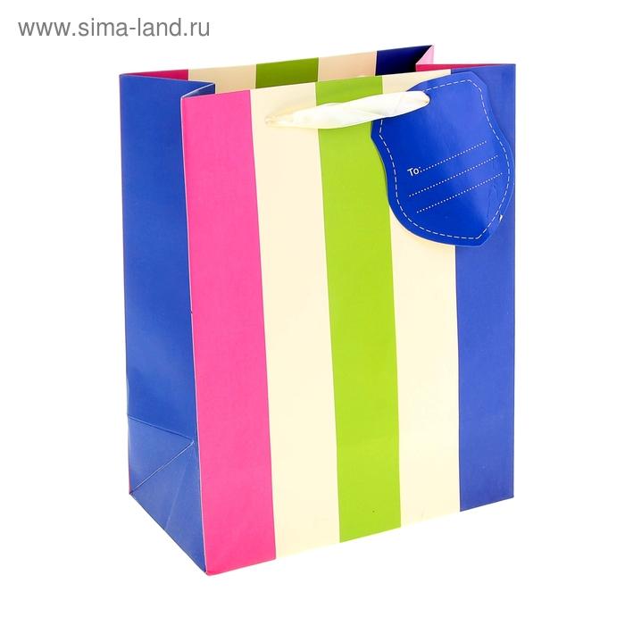 """Пакет ламинированный """"Разноцветные полоски"""""""