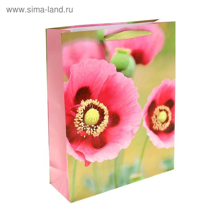 """Пакет ламинированный """"Цветы ветра"""""""