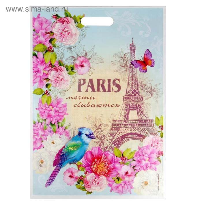 """Пакет подарочный полиэтиленовый """"Париж. Мечты сбываются"""""""