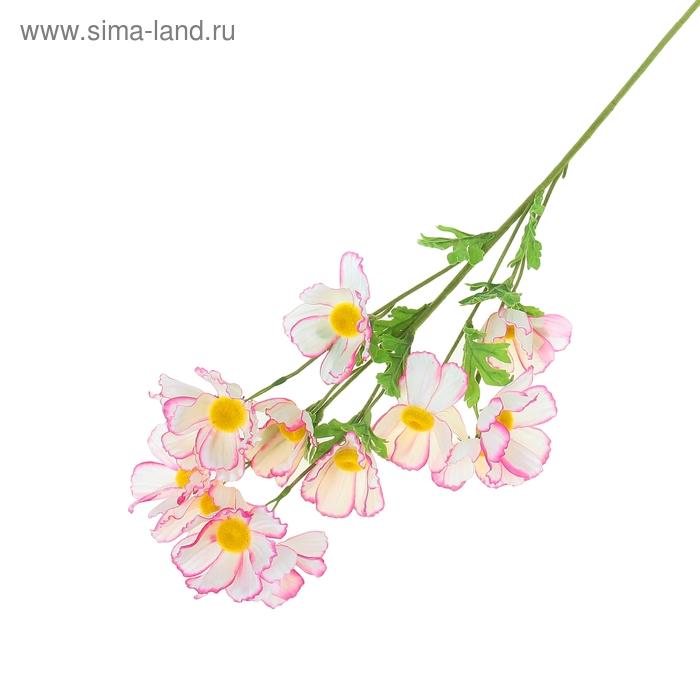 """Цветы искусственные """"Космеи с розовым кантом"""""""