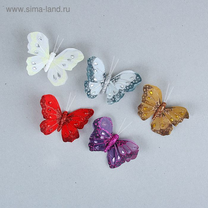 "Декор ""Бабочки"" на магните, цвета МИКС"