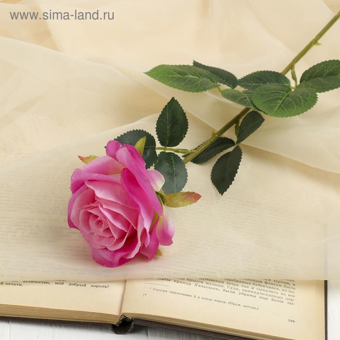 "Цветок искусственный ""Роза с каплями"" цвет фуксии"
