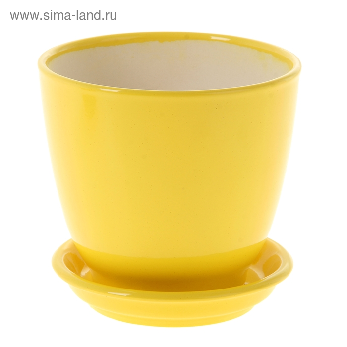 "Кашпо ""Кедр жёлтое, глянец, 1,6 л"