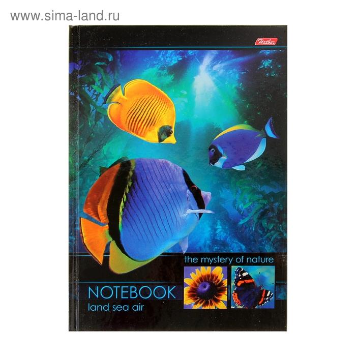 """Блокнот твердая обложка А5, 96 листов """"Подводный мир"""", 4-х цветный блок"""