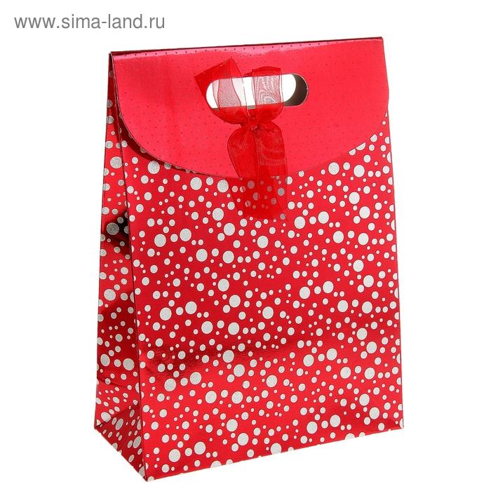 """Пакет с клапаном """"Перламутровый горох"""", цвет красный"""