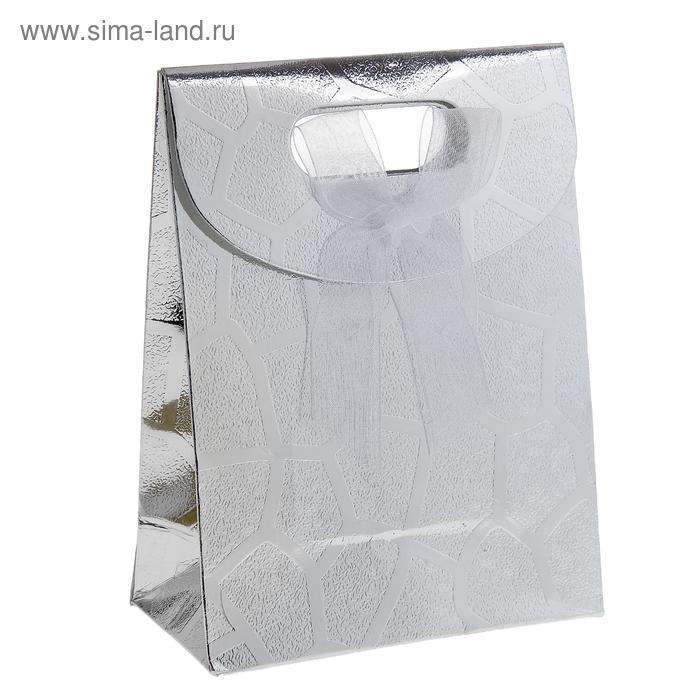 """Пакет с клапаном """"Перламутровая сетка"""", цвет серебро"""