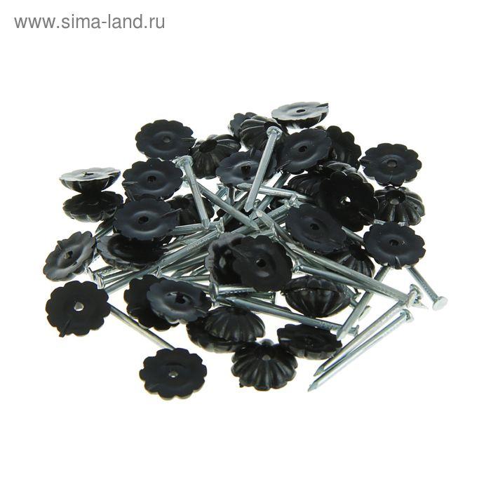 Гвозди декоративные черные 1,6х25 мм, 40 шт.