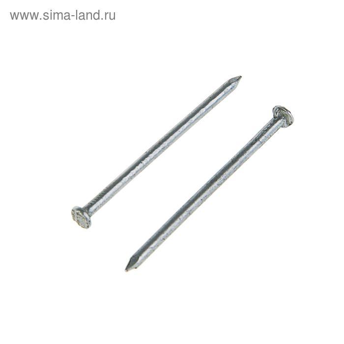 Гвозди строительные без покрытия 2,5х50 мм, 500 г