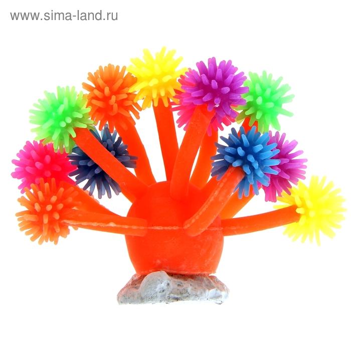 Декоративный коралл для аквариума, 10 х 7 см, микс цветов