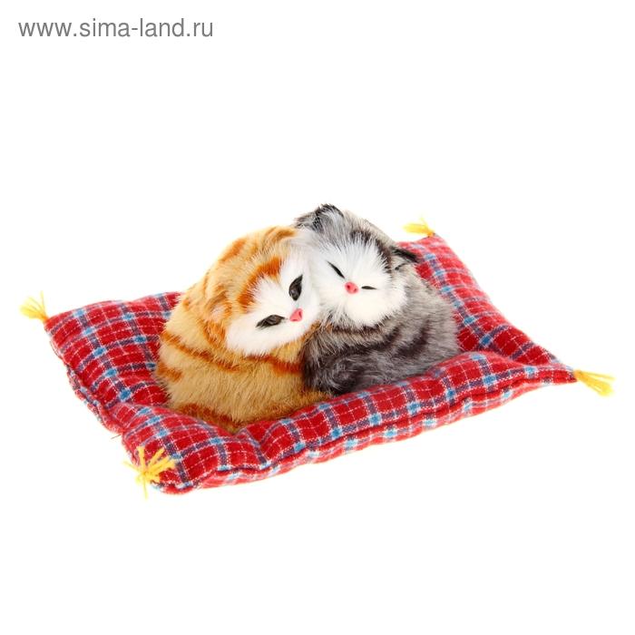 """Пушистик """"Котята на подушке"""", цвета МИКС"""