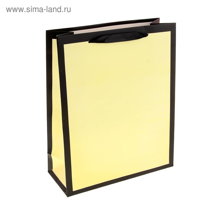 """Пакет ламинированный """"Рамка"""", цвет светло-желтый"""