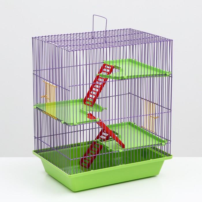 """Клетка для грызунов """"Гризли 4""""  с пластиковыми полками и лесенками, 41 х 30 х 52 см"""