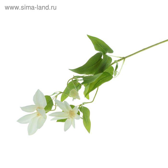 """Цветы искусственные """"Белый клематис"""""""