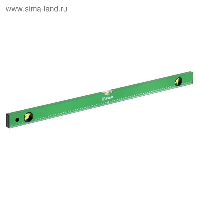 Уровень строительный TUNDRA basic, 3 глазка с линейкой, 80 см
