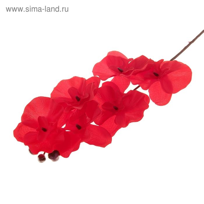 """Цветы искусственные """"Бордовая орхидея Ванда"""""""