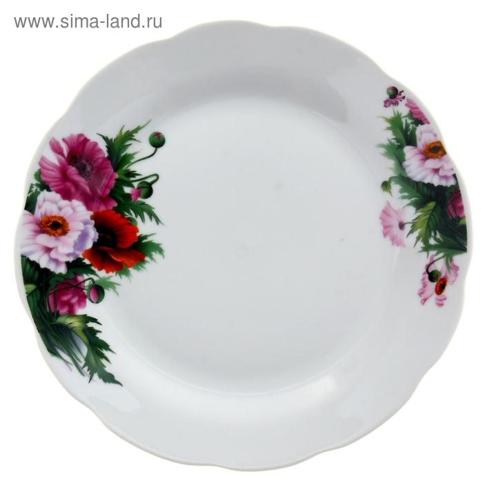 Тарелка обеденная  в ассортименте  УЦЕНКА