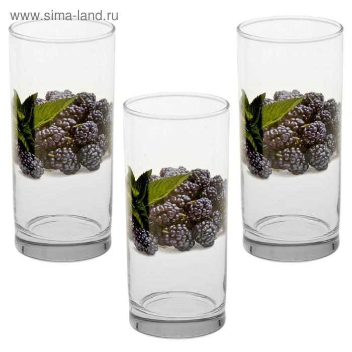 """Набор стаканов 300 мл """"Ежевика"""", 3 шт"""