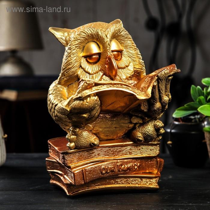 "Копилка ""Сова на книгах"" золото"