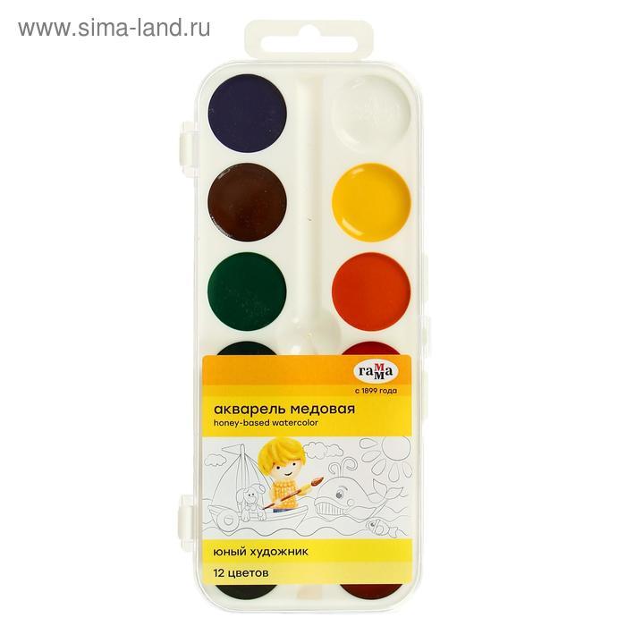 Акварель «Гамма ЮНЫЙ ХУДОЖНИК», 12 цветов, в пластиковой коробке, без кисти